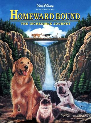 Hoomeward Bound : The Incredible Journey