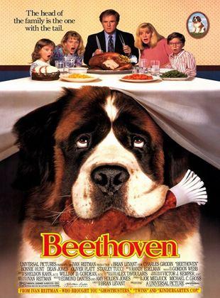 Afacan Köpek Beethoven