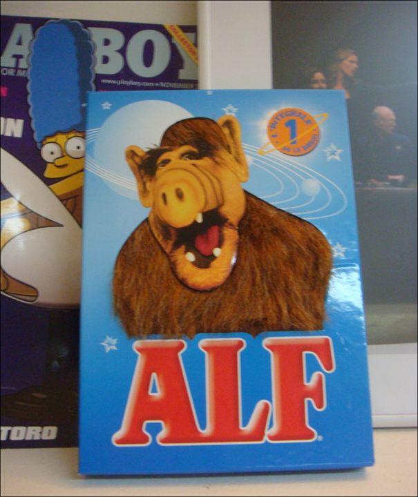 ALF : Fotograf